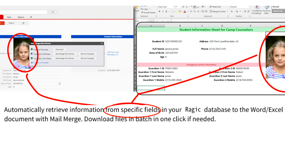 Automatically retrieve information from specific fields in your Ragic database to the Word/Excel document with Mail Merge. Download files in batch in one click if needed.